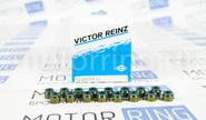 Сальники клапанов Victor Reinz на 16 кл ВАЗ 2110-2112