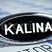 """Светодиодный шильдик с белой надписью """"Kalina"""" для Лада Калина 2"""
