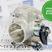 Дроссельная заслонка 54 мм на ВАЗ 2108-2115, Лада Приора, Калина, Гранта (прокладка в подарок)
